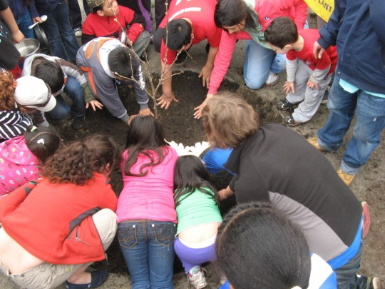 East Boston Neighborhood Health Center - Tree Planting Party 2011